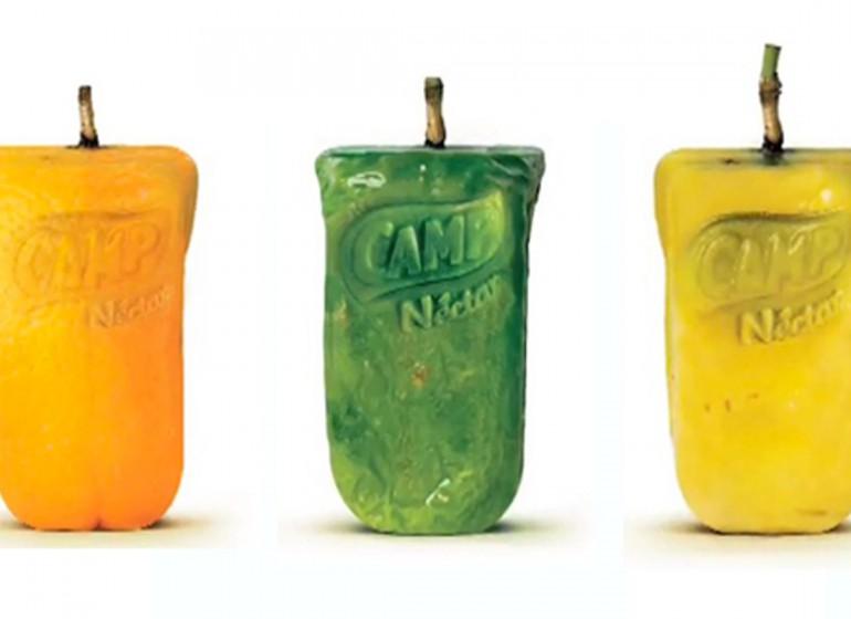 Real Fruit Boxes: quando il packaging cresce sugli alberi